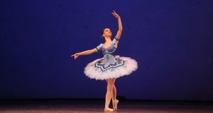 Игралното облекло за момичета в балетната зала включва :